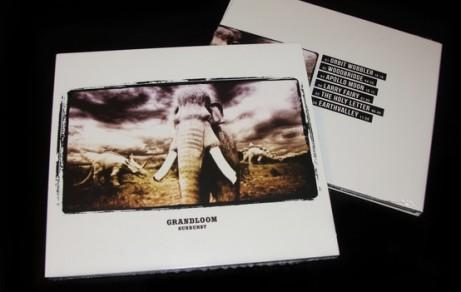 "Grandloom ""Sunburst"" | Album Artwork"